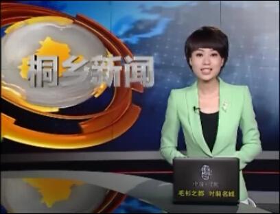 桐乡电视台海得新能源1.15MW分布式光伏发电项目专访